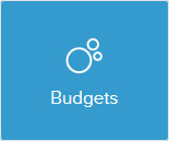 Circle chart icon saying budgets